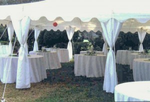 Thomas Wedding at Pebble Hill Plantation